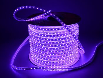 164 ft 120V Driverless RGB Color Changing LED Strip