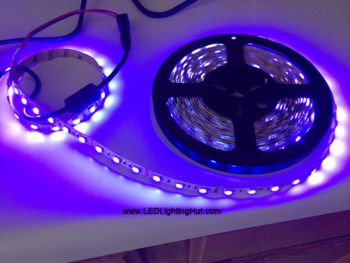365nm UV LED Light Strip, 60 SMD5050 LEDs/M, 5M/reel, DC12V Input