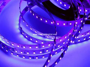 370-375nm UV 5050 SMD LED Light Strip, 60 LED/M, 5m/reel, DC12V