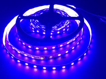 420-430nm UV 5050 SMD LED Light Strip, 60 LED/M, 5m/reel, DC12V