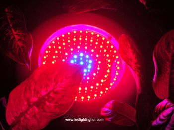 90W Full Spectrum 7:1:1 UFO LED Grow Lights, 400W HPS/MH Grow Lights Replacement