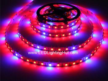 Red Blue LED Grow Plant Flexible 5050 LED Strip, 60 LEDs/m, 5m, 12VDC
