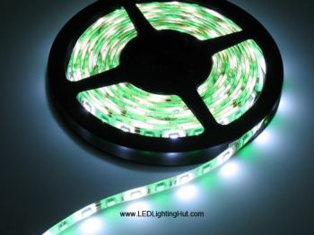 RGBW (RGB+White) SMD5050 LED Strip, 300 LEDs/Reel, 5 Meters, 12V/24V DC
