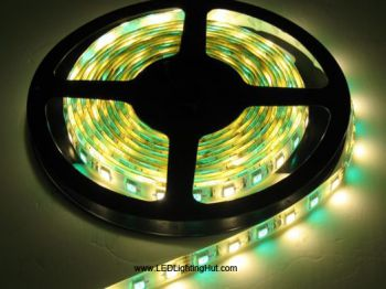 RGBWW (RGB+Warm White) SMD5050 LED Strip, 300 LEDs/Reel, 5 Meters, 12V/24V DC
