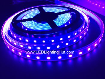 Ultraviolet 400-405 nm LED Light Strip, 5M/reel, DC12V Input