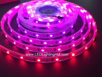 WS2811 IC Intelligent LED Strip, 32 LEDs/m, DC5V, IP67 Waterproof, 5m Reel
