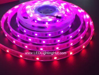 WS2811 IC Intelligent LED Strip, 32 LEDs/m, DC5V, IP67 Waterproof, 5m Reel